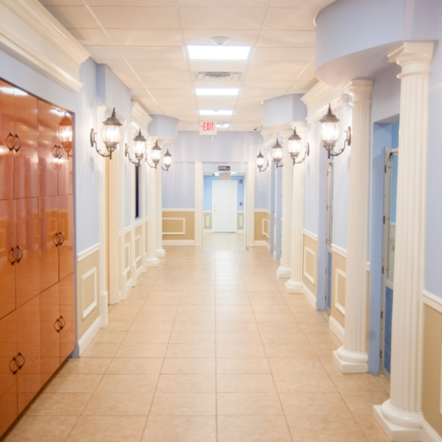 Photo Gallery   K9 RESORTS DAYCARE & LUXURY HOTELS