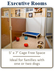 Executive Rooms: 5' x 7' Cage Free Space. Ideal for families with one or two dogs.