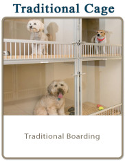 Traditional Cage: Traditional Boarding